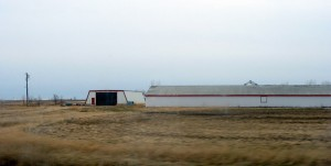 There will be more empty barns in Manitoba