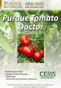 tomatodoc-cover