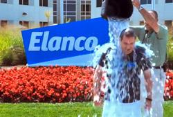 Jeff Simmons Elanco