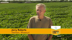 Liberty Link Real Yield Game
