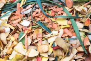 Kitchen waste for composting.