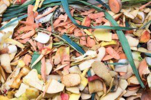 Kitchen waste for composting.