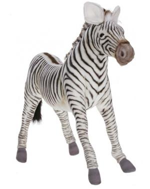 Zimmie The Zebra