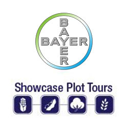 bayer-plot-tours