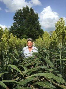 Sorghum Shootout grower Tim Fisher, of Wyne, Arkansas, shows off his head-high sorghum fields.