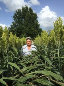Sorghum Shootout grower Tim Fisher, of Wyne, Arkansas, shows off his head-high sorghum fields.
