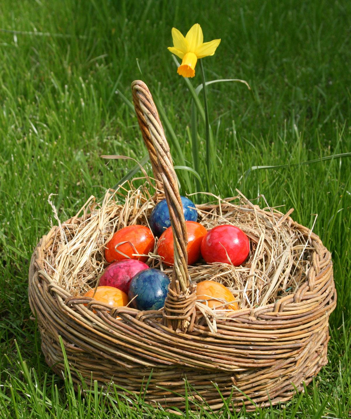 Fairfield, Power egg hunts March 31
