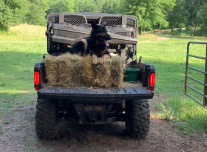 Riggs on a Can-Am Defender