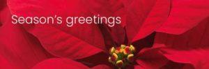 Syngenta Media Group Holidays